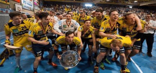 Die Rhein-Neckar Löwen sind deutscher Handballmeister
