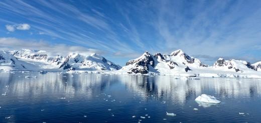 Klimawandel Eisbären sterben Polkappen schmelzen