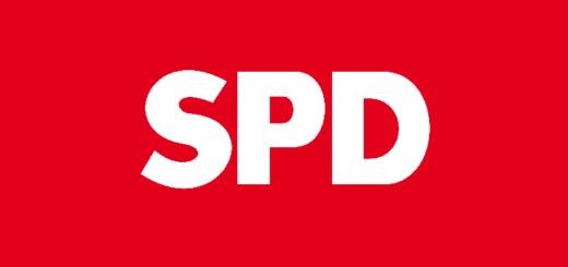 SPD-Vorsitz Was ist denn da los