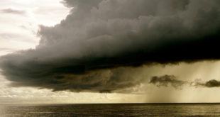 Al Gore eröffnet eine neue Front im Kampf gegen den Klimawandel Fridays for Future